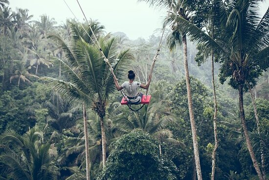 Private Full Day Tour to Ubud...