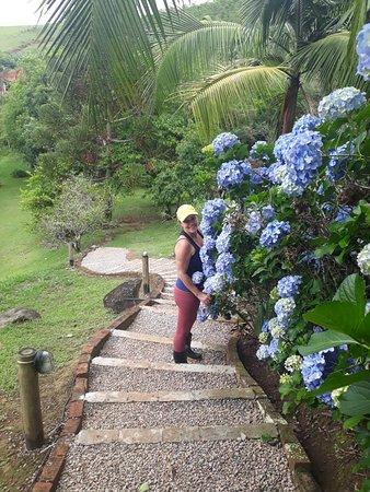 Curtir a natureza, relaxar e descansar