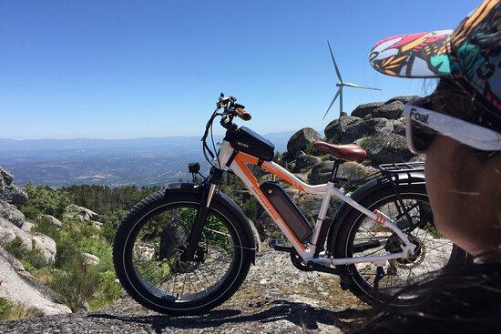 Electromule.bike