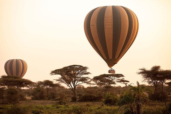 #1 Serengeti Balloon safari Tour Company/Operators | BURIGI CHATO SAFARIS Co L.T.D