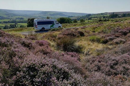 Visite privée: North Yorkshire Moor et Whitby de York en minibus 16...