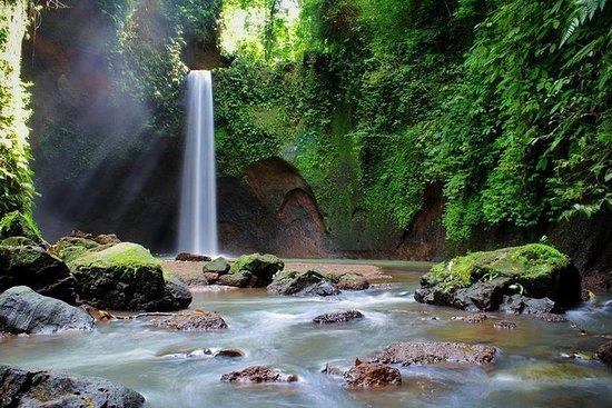 巴厘岛包容旅游:瀑布,丛林秋千,水稻梯田和寺庙