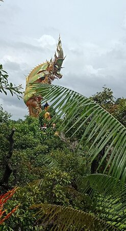 A naga in the forest