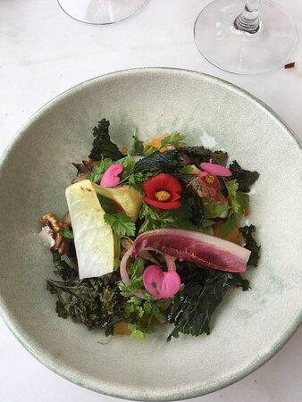 Salade de lentilles béluga de M. Degouve (endives braisées, noix fraiches), un délice !