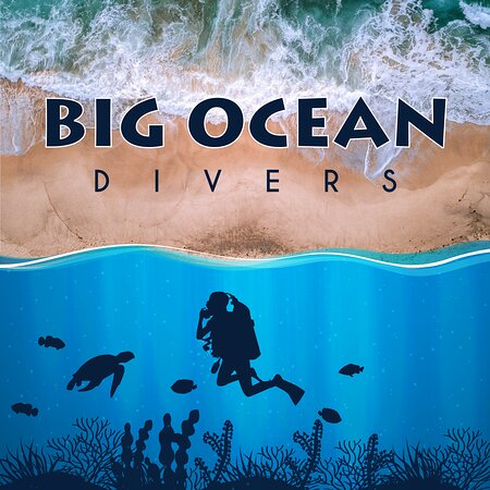Big Ocean Divers