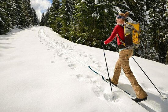 Half-Day Guided Backcountry Ski Touring Experience near Incline...