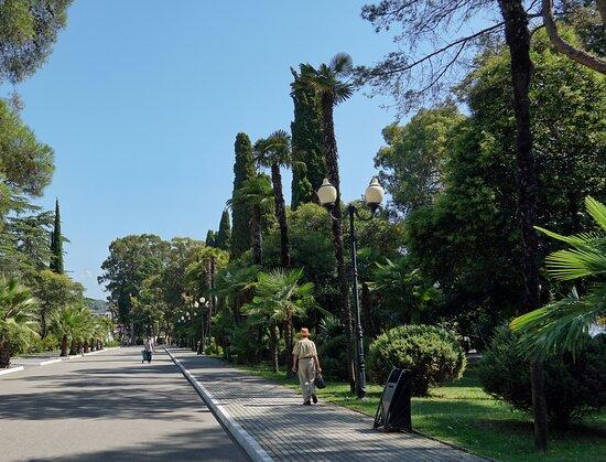 Evkaliptovy Park