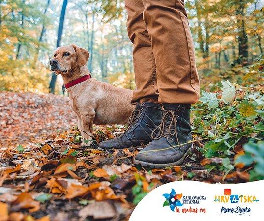 Karlovac County, Horvátország: Jesen je idealno vrijeme za istraživanje prirode, a pgotovo s Vašim ljubimcima!