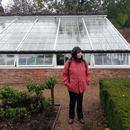 The excellent greenhouse with produce and plants for sale.