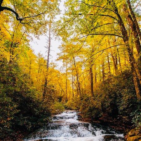 Triple Falls Trail