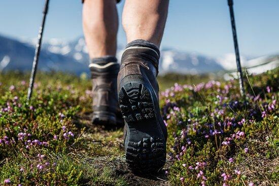 Utah Wilderness Guides