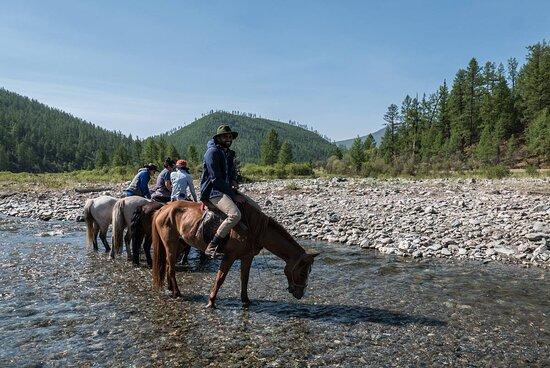 Khatgal, Mongolie : horse trekking