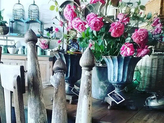 Antiques & Vintage Treasures in Maleny