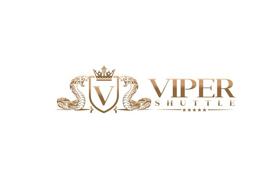Viper Shuttle