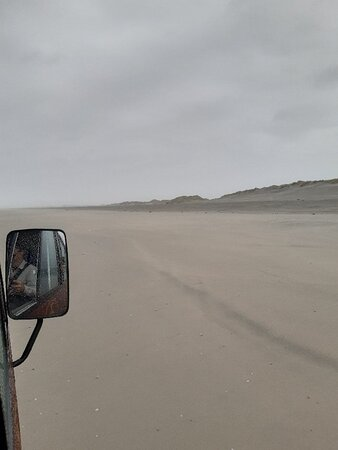Sand dunes and wild life