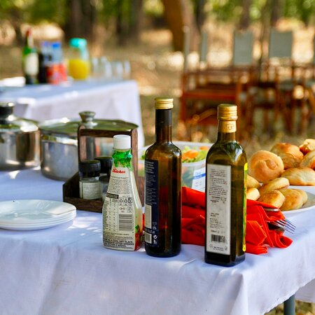 Bush Brunch In the South Luangwa National Park Zambia