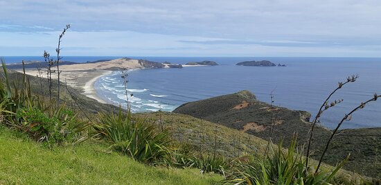 Mount Maunganui, New Zealand: Looking south from Cape Reinga