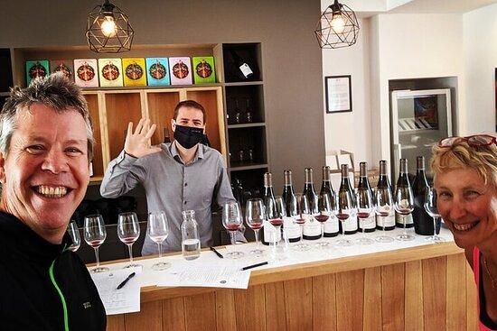 Visite et Dégustation vins avec Œnologue