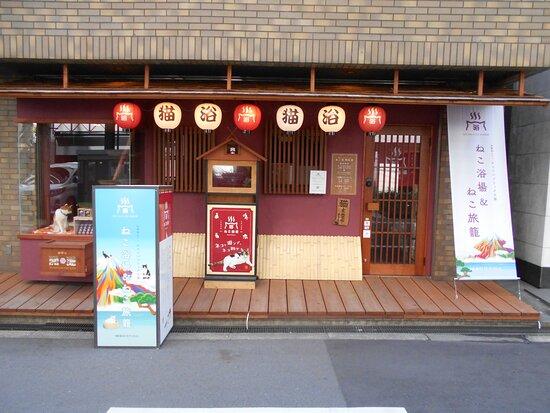 Neco Republic, Osaka Shinsaibashi