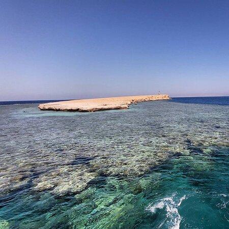 Umm Gamar reef Hurghada