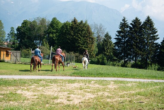 Photos de Sentieri di Stelle - Photos de Fiave - Tripadvisor