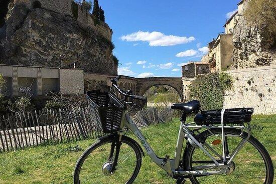 E-bike tour and wine tasting from Vaison la Romaine