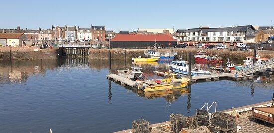 Lovely Harbour
