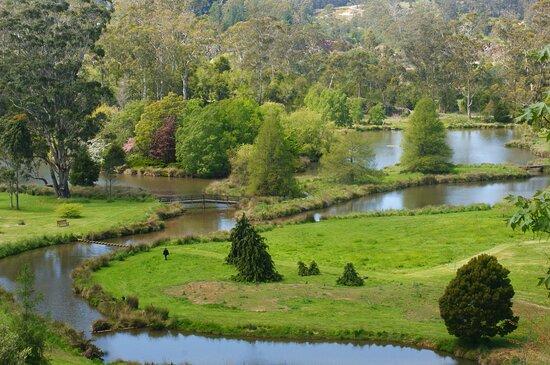 The Tasmanian Arboretum