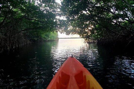 Laguna Grande- Bioluminescent Bay Kayak Adventure With Roundtrip...