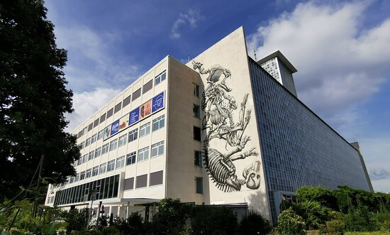 GUM - Ghent University Museum