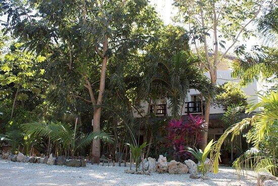 Jungle Óol Riviera Maya