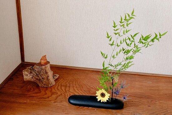 人気の花見スポットを訪問 ‐ ビュッフェランチ付き