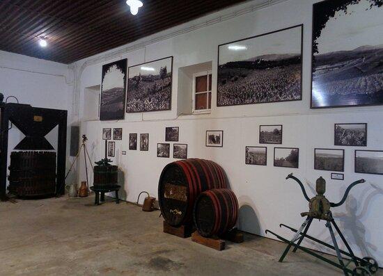 Kings Winery