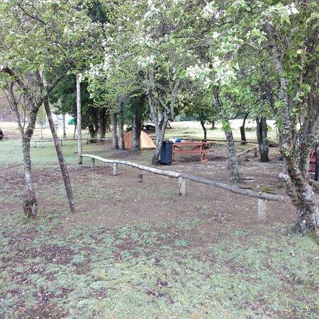 ProvinzArauco, Chile: Aire puro, y espacio para  relajarse  no te arrepentirás agrocamping kiñeco los espera