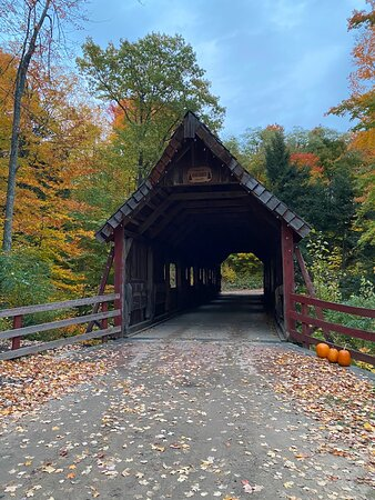 Lake Ann, MI: Loon Song Covered Bridge