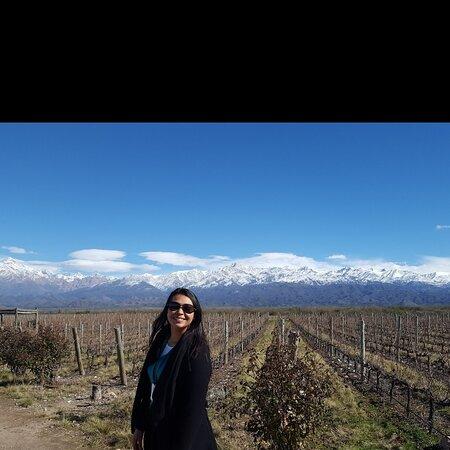 Province of Mendoza, Argentina: Mendoza