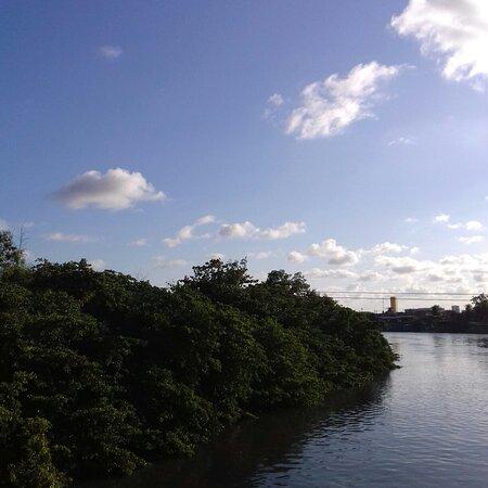 Manguezal Do Rio Capibaribe