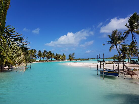 Mataiva, French Polynesia: Bord de plage immédiat