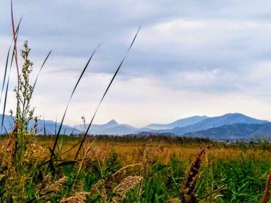 Province of Castellon, Spania: Landscape 🌲🌳
