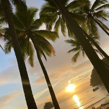 Isla Cedros照片