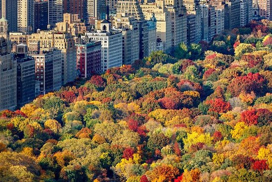 Private Hudson Valley Fall Foliage Helicopter Charter from...