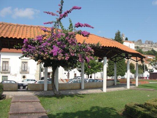Parque Municipal da Juventude