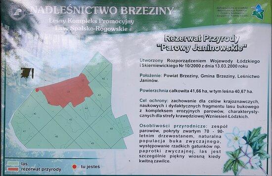 Koluszki, Poland: Rezerwat Parowy Janinowskie - tablica informacyjna
