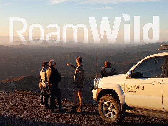 Queenstown, Australia: Extraordinary experiences with RoamWild Tasmania. The Mt Owen adventure.