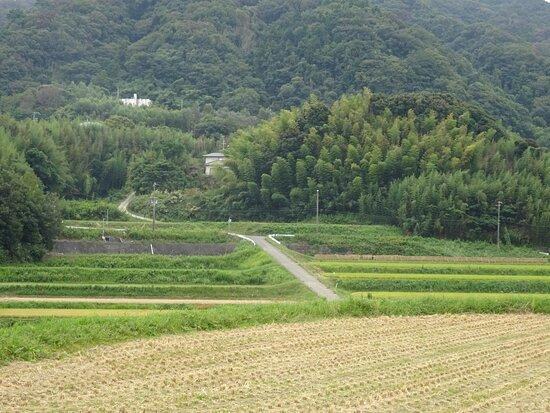 Kochi Dam