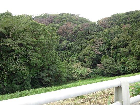 Taniyama Dam