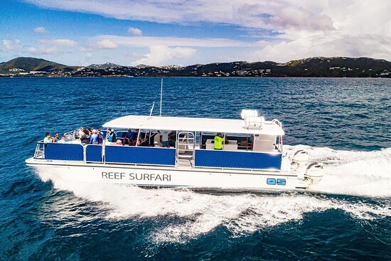 Half day snorkel and sunset Tour from...