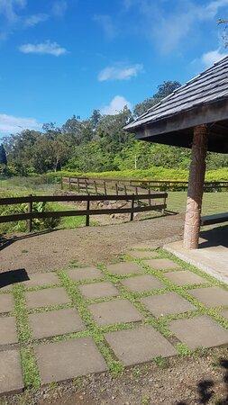 Prendre de la hauteur à Tahiti