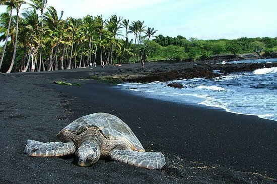 Big Island Hawaii Tour Guide
