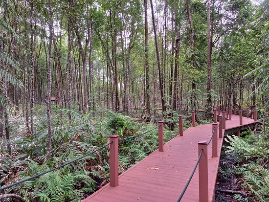 Matang Mangrove Eco-educational Centre (mmec)